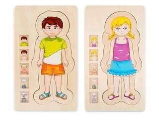 🚚 Montessori human Body anatomy 5 layer wooden puzzle boy girl educational fun play cognitive structure biology science