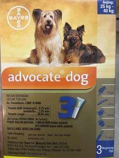 Advocate Dog