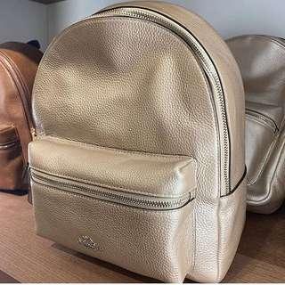 Coach Charlie Medium Backpack in Platinum