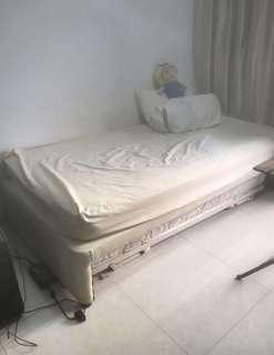 🚚 URGENT SALE! Super single bed + pullout bed