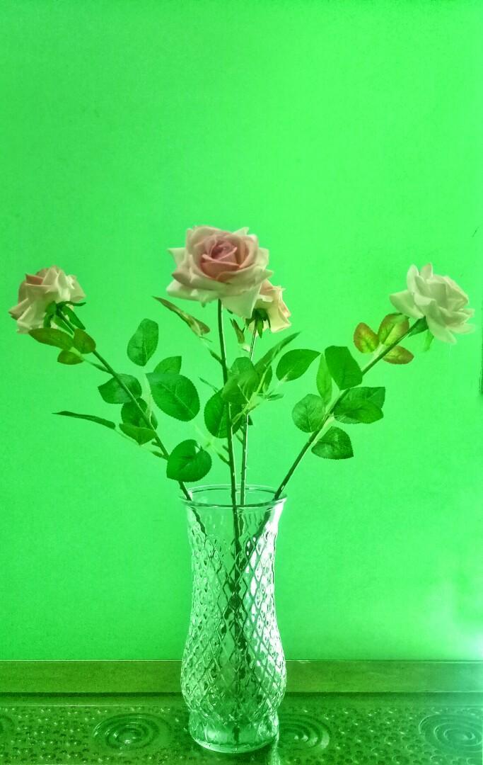 Vas Bunga Besar Dan Bunganya Perabotan Rumah Di Carousell