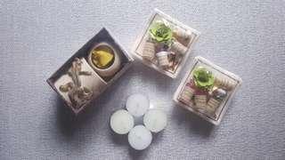 Essential Oils Burner + Lilin