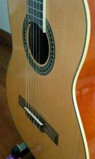 "Brand new Classical Guitar 39"" (free Fender picks while stock last)"