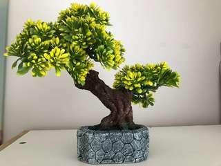 Gorgeous Fake bonsai tree