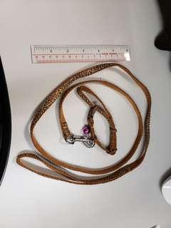 狗繩 leash 迷你犬用 tiny size 豹紋leopard