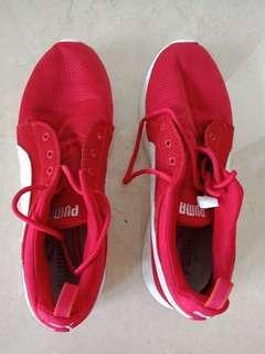 Puma Running Shoes (size US 11)
