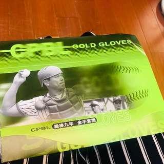🚚 職棒九年/金手套獎 完整紀念郵票文冊 CPBL Gold Gloves (1998年12月發行)