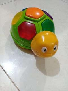 Mainan baby turtle