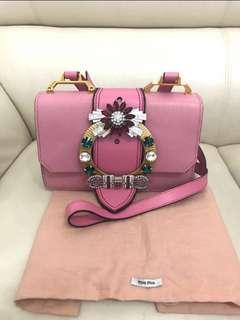 Miu Miu Bag lady