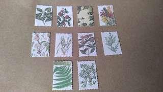 10pcs. Plant Stickers