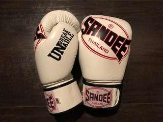 SANDEE Boxing Muay Thai Gloves 12oz