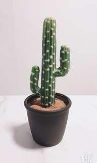Artificial Cactus (Small)