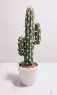 Artificial Cactus (Medium)