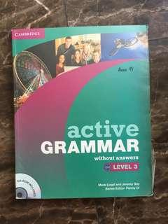 Cambridge English Active Grammar Level 3