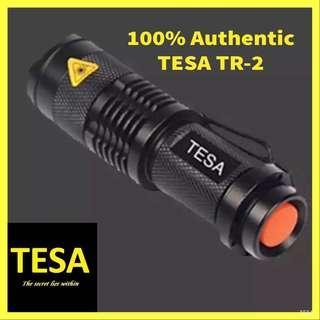 🚚 Torchlight flashlight