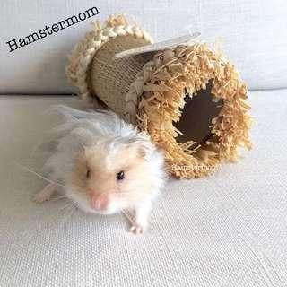 Hamster Seagrass & Corn Nibble Tunnel Toy