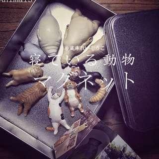🌈睡覺動物模型磁貼 #玩物尚志 #冰箱貼