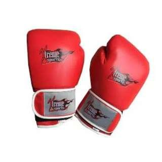 Xtreme Boxing Gloves