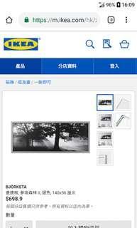 Ikea 宜家長方形大樹林畫 全新連密封包裝膠紙 原價近七百元
