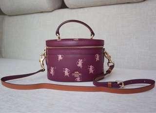 Coach Purple Trail Bag 水桶包