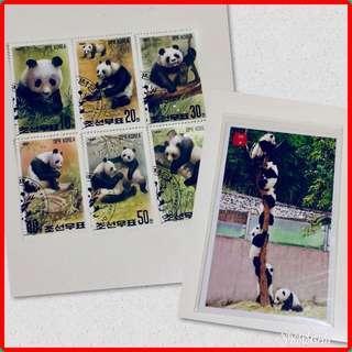 🚚 BN Panda Stamps & Postcard