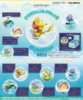[開團] Rement Pokemon Terrarium 5 水晶球