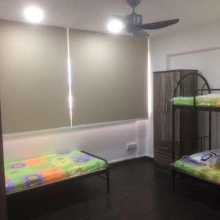Looking for one tenant to share room - Yishun Ave 6