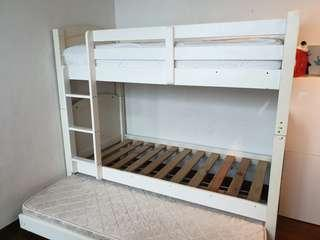 Little Wode Wooden Bunk Bed with Trundle
