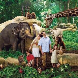 Zoo SG $23 🍀