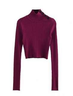 Maroon knitted turtle neck