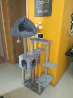 🚚 Plush Cat condo with Cave chion for sale!