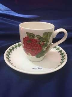 Portmeirion Cup and Saucer