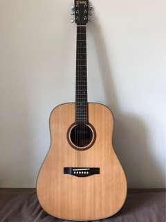 EST Acoustic Guitar DS-1000