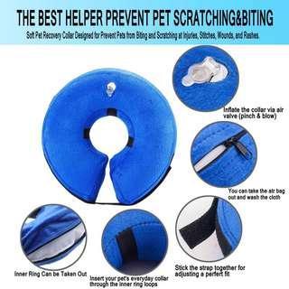 Inflatable Protective E-collar