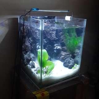 Aquarium mini air terjun