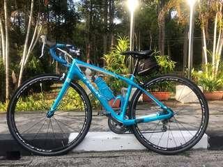 Beautiful Carbon Trek Bike