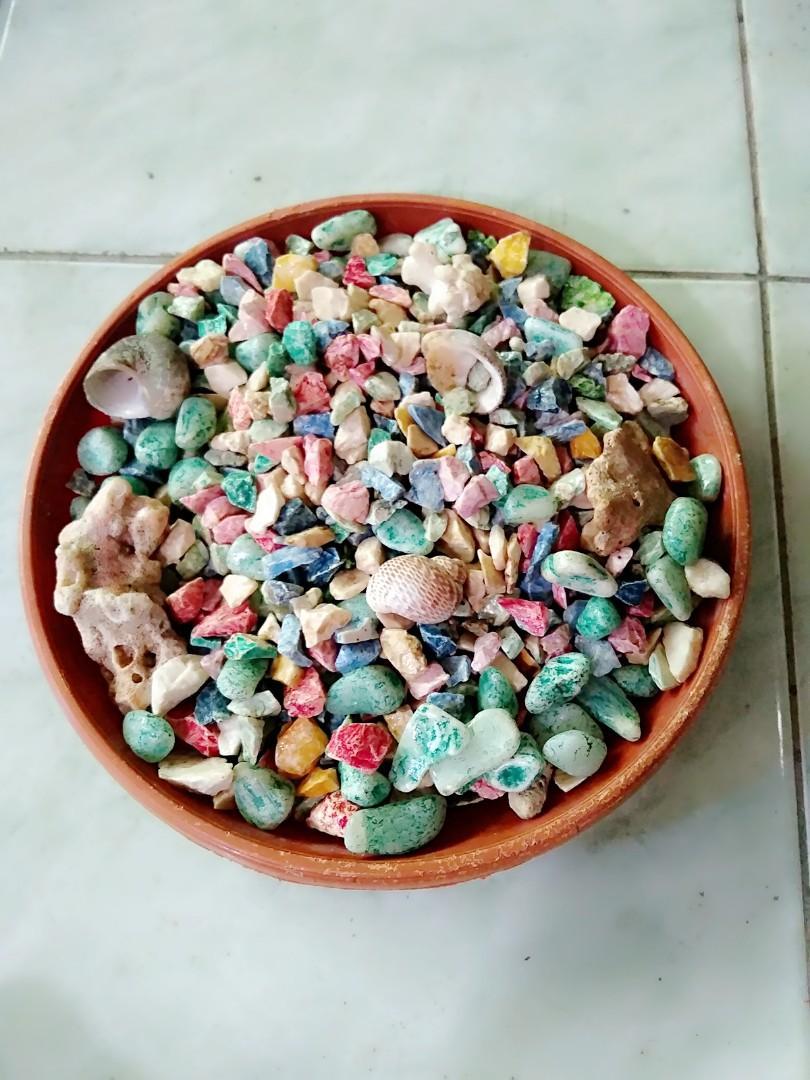 Batu Warna Warni Aquarium