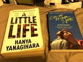 Call Me By Your Name + A Little Life