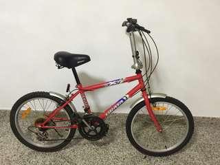 20 Inch Bicycle Urata