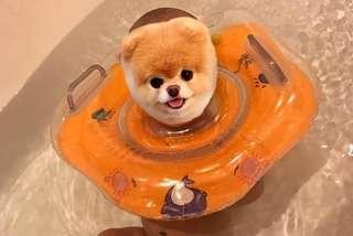 Neck Float