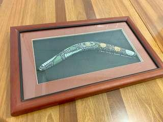 🚚 Framed Boomerang from Australia