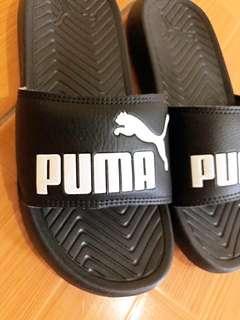 Puma slide