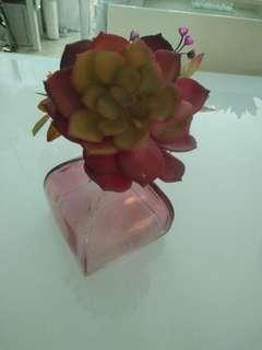 🚚 Succulent and vase