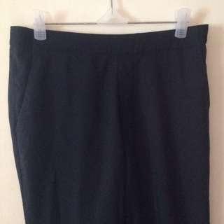 Uniqlo Smart Ankle Pants (Navy Blue)