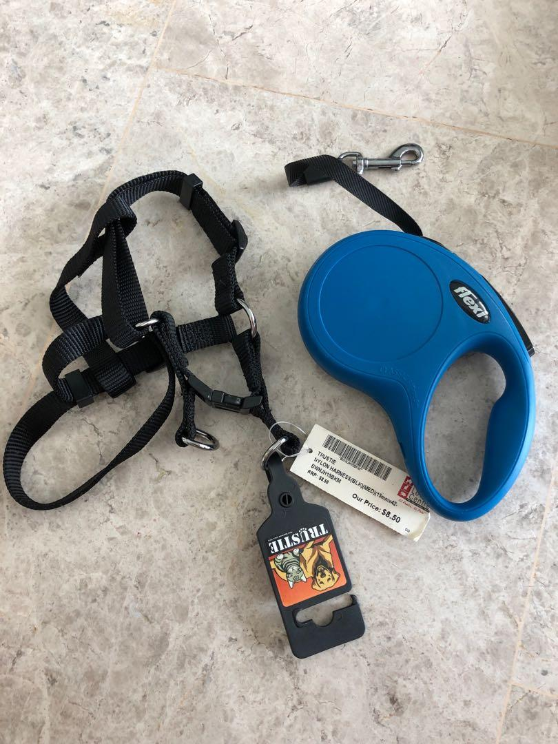 Dog leash and harness for small dog