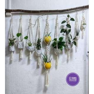 🌳Wholesale & Retail High quality macrame plant hanger 🌳