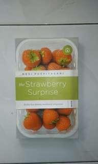 Novel The Strawberry Surprise