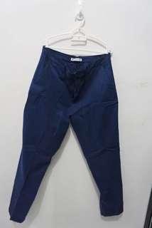 Zara Blue Pants