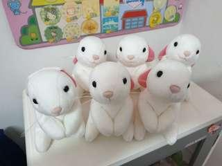 🚚 療癒舒壓兔子一堆
