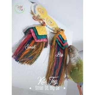 Parrot Kite Toy